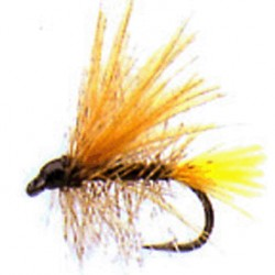 CDC PALMER YELLOW