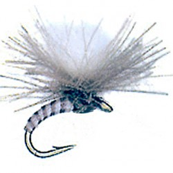 CDC QUILL PARACHUTE