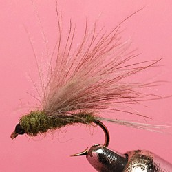 CDC DIRECT HACKLE BWO