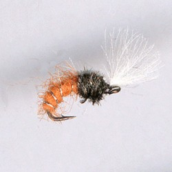 CDC BUZZER ORANGE