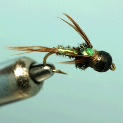 PHEASANT TAIL FLASH BACK HB