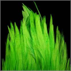 SELLE COQ TEINT HOT GREEN