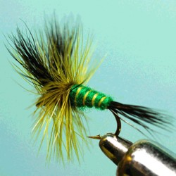 GREEN WULFF