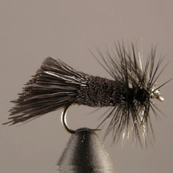 LONG BLACK GODDARD CADDIS SA