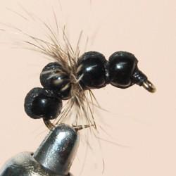 ANT BLACK PERLE