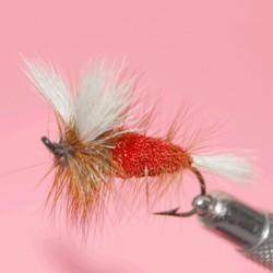 dry salmon ram 3