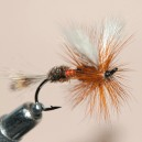 dry salmon ram 7