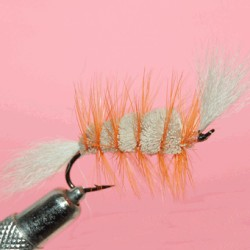 dry salmon ram 11